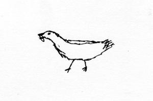 nb starling